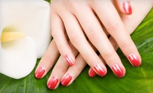One Mani-Pedi with Ombre Finish or One or Two Spa Mani-Pedis with Paraffin at Color Bar Salon & Spa (Up to 55% Off)