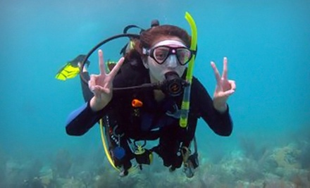 $185 for a PADI Open-Water Scuba-Certification Course with Dives from Squalo Divers ($500 Value)