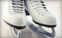 Ice-Skating Package for Two or Four at Vollmer Culture and Recreation Complex (Up to 64% Off)