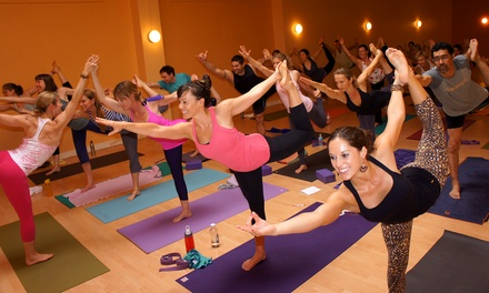 Introductory Yoga Course or One Month of Unlimited Classes at SHAKTI Vinyasa Yoga (Up to 51% Off)