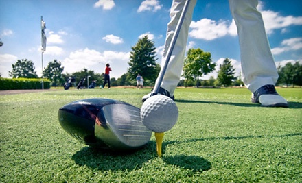 Three One-Hour Private Lessons for One or Two, or Five One-Hour Private Lessons at My Golf Tally (Up to 70% Off)