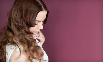 $45 for Haircut, Style, and Choice of Partial Highlights or Single-Process Color at J. Denae Salon ($95 Value)