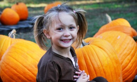 $14 for Autumn Outing with Hayride, Train Rides, and Pumpkins for a Family with Two Kids ($21 Value)