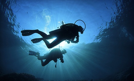$39 for a Three-Hour Intro to Scuba Class at Dolphin Scuba Center & Swim School ($80 Value)