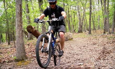 Three-Hour or Full-Day Bike-and-Beer Adventure for One or Two from Shenandoah Trail Cruisers (Up to 74% Off)