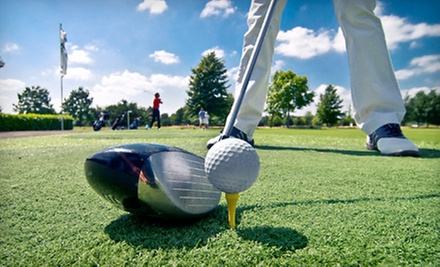 Three or Five One-Hour Private Lessons at My Golf Tally (Up to 70% Off)