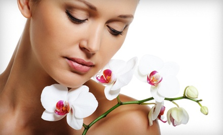 One, Three, or Five Diamond-Microdermabrasion Treatments at Le Belle Visage Day Spa (Up to 59% Off)