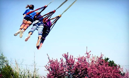 Sport-Swing Rides and Activities for Two, Four, or Six at Doennig Sport Swings and Ozark Paintball (Up to 58% Off)
