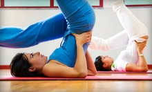 5 or 10 Yoga Classes With or Without Yoga Mat and Bag at The Ayurvedic Path (Up to 77% Off)