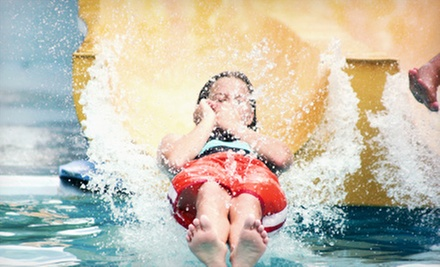 Four Water-Park Visits or Moonglow Monday Madness Teen-Party Entry on August 5 at The Springs Aquatic Center (Half Off)