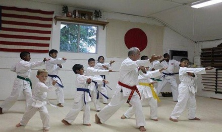 $56 for $199 Worth of Martial Arts — Japan Karate Center