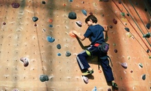One-Week Summer Camp for Kids Aged 3–5 or in Grades 1–6 at Spirals Gym & Ed-Venture Kids Center (Up to 57% Off)