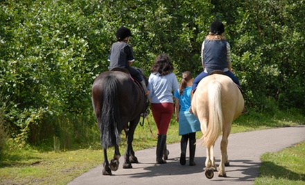 One Day of Horseback-Riding Camp for Kids Aged 5–8 or 9–11 at In The Breeze Horse Ranch (51% Off)