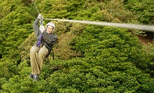 $75 for a Guided Zipline Tour For Two People at Dagaz Acres ($140 Value)