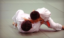 One or Two Months of Kickboxing, Muay Thai, or Jiujitsu Classes at Team Bullshark (Up to 82% Off)
