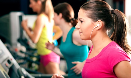 Six-Month or One-Year Gym Membership at The Zoo Health Club - Hicksville, NY (Up to 53% Off)