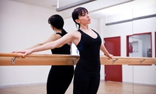 Pilates Classes and Private Lessons at The Pilates Bodyshop (Up to 53% Off). Three Options Available.