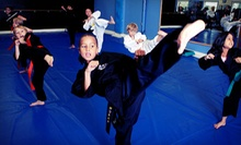 One Month of Karate Classes, or Two or Three Months of Karate with Uniform at Steve Anderson Karate (Up to 88% Off)