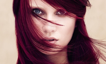 Haircut and Conditioning Packages at           David Dru Aveda Salon (Up to 62% Off). Two Options Available.