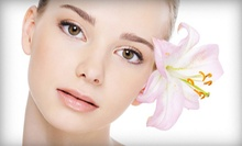 $25 for $50 Worth of Spa and Salon Services at The Studio Academy of Beauty