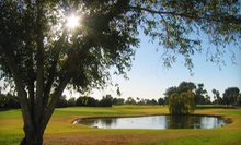$18 for 18 Holes of Golf with Range Balls and Bottle of Water at Peoria Pines Golf & Restaurant (Up to $37.31 Value)