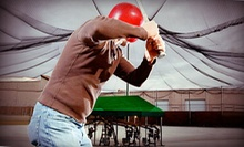 $29 for 30 Rounds in a Batting Cage or a 30-Minute Baseball Lesson at Charlie Rose Baseball ($60 Value)