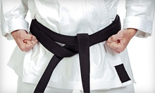 10 or 20 Brazilian Jujitsu Classes at Carlson Gracie South Bay (Up to 84% Off)