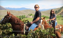 90-Minute Horseback Tour and Wine Tasting for One or Two from Wine Country Trails by Horseback (Up to 61% Off)