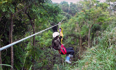Segway Tour Package, Two-Hour Zipline Trip, or Combo Package at Botanical World Adventures in Hakalau (Up to 54% Off)