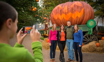 $45 for Admission to Busch Gardens Williamsburg, Including Howl-O-Scream Admission (Up to $75 Value)