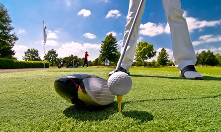 18-Hole Round of Golf with Cart and Range Balls for Two or Four at Delaware Springs Golf Course (Up to 31% Off)