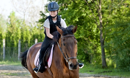 One Week of Half-Day or Girls' Overnight Horseback-Riding Summer Camp at Battlefield Park Polo Club (50% Off)