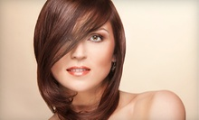 Haircut with Blow-Dry and Optional Conditioning or Partial or Full Highlights at Edessa's Hair Salon (Up to 62% Off)