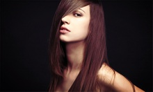 Men's or Women's Haircut or Three Shampoos and Blowouts for Long or Short Hair at Hair Factor &amp; Spa (Up to 52% Off)