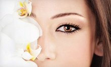 Permanent Makeup at The Day Spa (Up to 51% Off). Three Options Available.