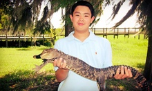 $15 for Family Alligator-Zoo Visit for Up to Six with Holding and Feeding at The Alligator Attraction ($30 Value)