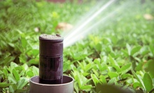 $19.99 for a Sprinkler-System Checkup from Artefacto Landscapes LLC ($45 Value)