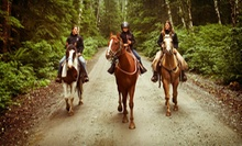 60-Minute Horseback Trail Ride for One, Two, or Four at Crowley's Sales Barn & Stables (Up to 58% Off)