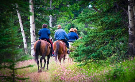 One-Hour Guided Trail Ride for Two or Four from Stono River Riding Academy on Johns Island (Up to 58% Off)