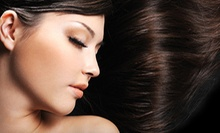 Haircut and Conditioning, All-Over Color, or Partial Highlights and Toner at Blowout Salon (Up to 55% Off)