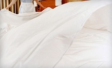 $49 for an Egyptian Cotton Four-Piece Queen- or King-Size Sheet Set from Mattress Warehouse of Tampa Bay ($129 Value)