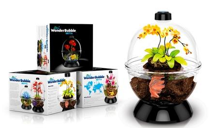 Wonder Bubble Aquarium