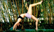 10 Yoga Classes or One Month of Unlimited Classes at Sol Yoga (Up to 74% Off)