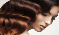 GROUPON: Up to 50% Off Women's Salon Services at The Platine Salon The Platine Salon