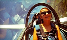Introductory, Intermediate, or Mile-High Scenic Flight with Lesson from Sylvania Soaring Adventures (Up to 54% Off)
