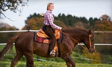Two 40-Minute Horse-Riding Lessons or One- or Three-Day Summer Camp at Willow Run Farm in Wilsonville (Up to 53% Off)