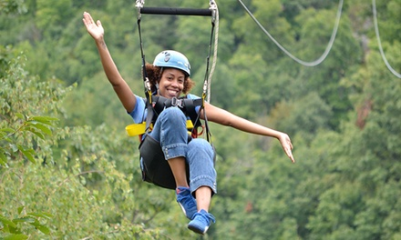 Summer Adventure Passes to Horseshoe Resort (Up to 43% Off). Two Options Available.