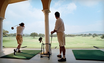 One or Two Buckets of Balls with Beer or Soda, or 30- or 60-Minute Lesson at The Aqua Golf Driving Range (Up to 73% Off)