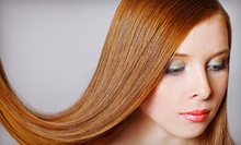 Haircut with Optional Partial Highlights, or Brazilian Blowout or Keratin Express Treatment at Headlines (Up to 72% Off)