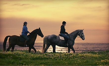 Horse-Riding Lesson and Drinks at Blue Moons Riding School (Up to 70% Off). Four Options Available.
